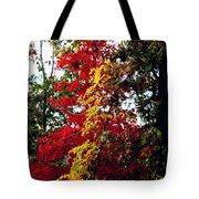 Falls Brilliance Tote Bag