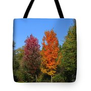 Falls Colours Tote Bag