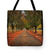 Fall's Driveway Tote Bag