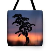 Falls Dying Breath Tote Bag