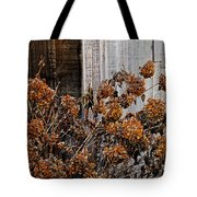 Fall's Fleeting Memories Tote Bag