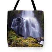 Falls In The Falls Tote Bag