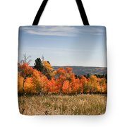 Fall's Splendor - Casper Mountain - Casper Wyoming Tote Bag