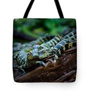 Baby Alligator Selfie Tote Bag