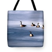 Family Group Tote Bag
