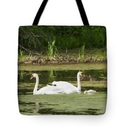 Family Is Everything Tote Bag
