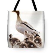 Family Of Ducks Tote Bag