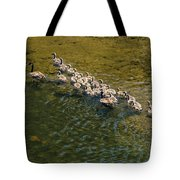 Family Of Geese On The Rogue River Tote Bag