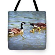 Family Of Geese Out For A Swim Tote Bag