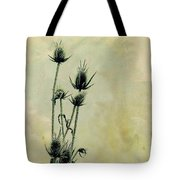 Family Of Teasels Tote Bag