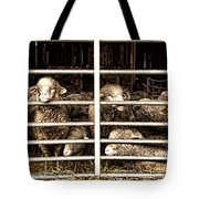 Family Portrait Behind Bars Tote Bag
