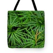Fan Club Moss Foliage Tote Bag