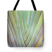Fan Palm Abstract 2 Tote Bag