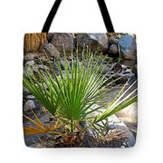 Fan Palm Leaf Over Andreas Creek In Indian Canyons-ca Tote Bag