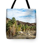 Fan Palms Line The Creek In Andreas Canyon In Indian Canyons-ca Tote Bag