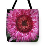 Fancy Pink Daisy Tote Bag