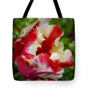 Fancy Spring Tote Bag