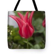 Spiky Tulip Tote Bag