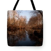 Far Mill River Reflects Tote Bag