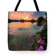 Farewell From The Sun Tote Bag
