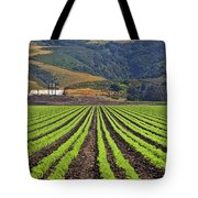 Farm Lands Of The Central Coast By Diana Sainz Tote Bag