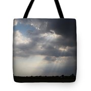 Farm Sunbeams Tote Bag