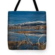 Farmers Pond Tote Bag