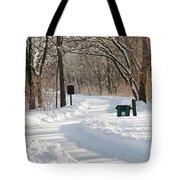 Farnsworth Park Path Tote Bag