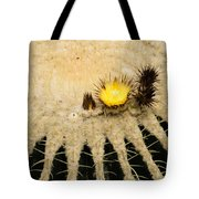 Fascinating Cactus Bloom - Soft And Fragile Among The Thorns Tote Bag