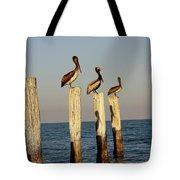 Fashionably Late Tote Bag