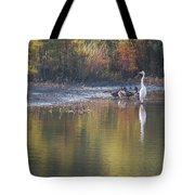 Fast Feathered Friends Tote Bag