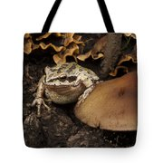 Fat Frog Tote Bag by Jean Noren