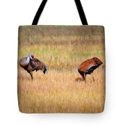Father An Son Tote Bag
