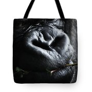 Father First  Tote Bag