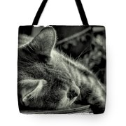 Fatigued Feline Tote Bag