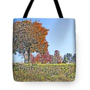 Favoring The Fall Colors Tote Bag