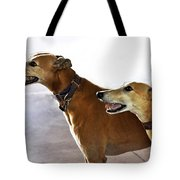 Fawn Greyhound Dogs Profile Tote Bag
