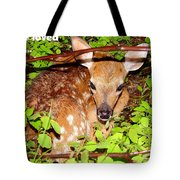Fawn In The Forest - Inspirational - Religious Tote Bag