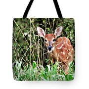 Fawn In The Grass Tote Bag by Marty Koch