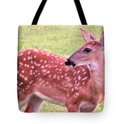 Fawn In The Waning Summer Tote Bag