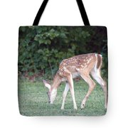 Fawn Meadow Tote Bag