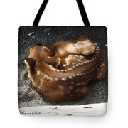 Fawn Resting Tote Bag