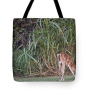 Fawn Snacking Tote Bag