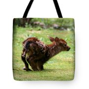 Fawn's First Steps Tote Bag