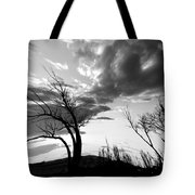 Fear Of Symptoms Tote Bag