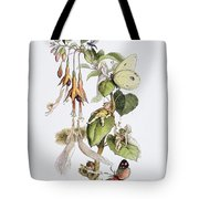 Feasting And Fun Among The Fuschias Tote Bag
