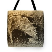 Feather And Leaf Tote Bag