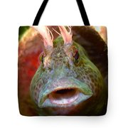 Feather Blenny - A Fish  Tote Bag