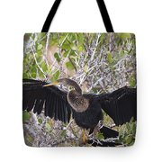 Feather Drying Tote Bag