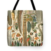 Feather Plumes-a Tote Bag